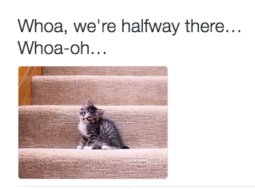 kitten-on-a-stair