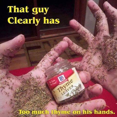 too-much-thyme